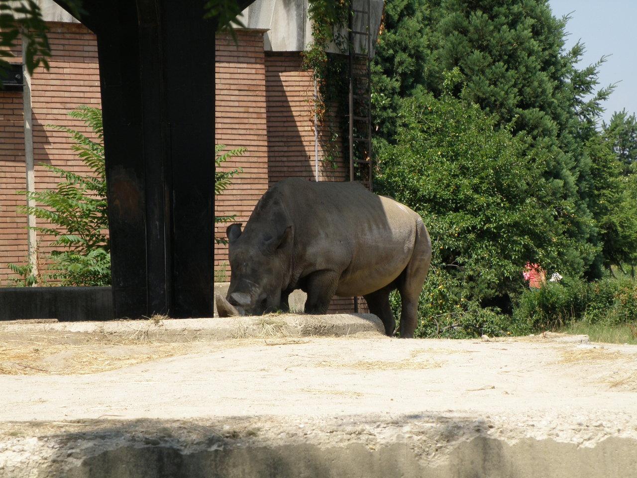 Zoo Sofia