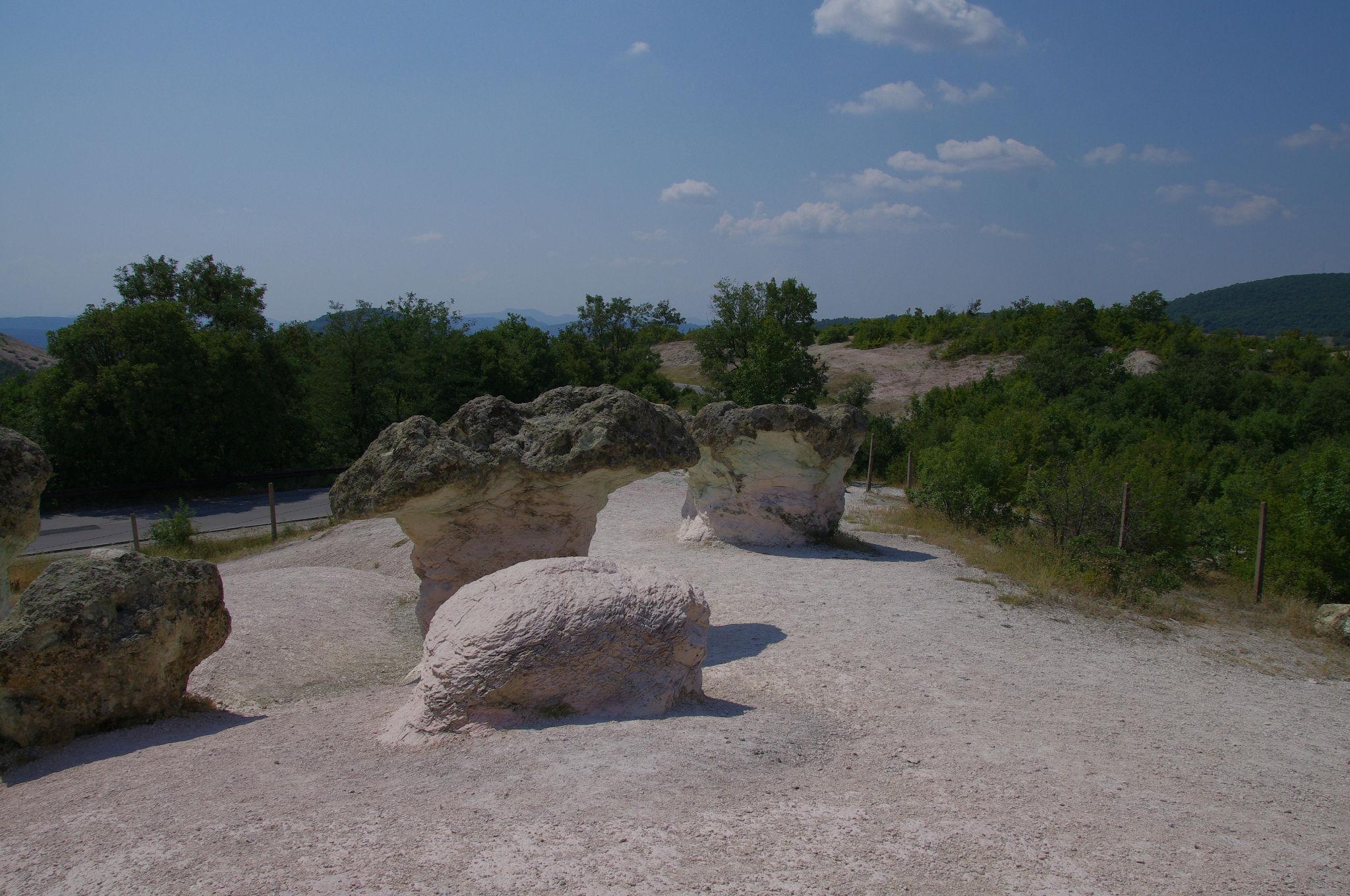 Каменните гъби